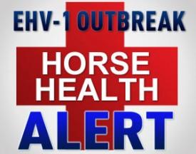 ehv-1-outbreak-alert-275x216